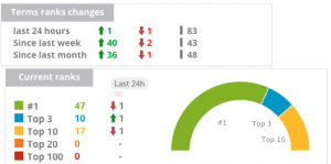 Edge Digital ranking-increase-post-google-algorithm-update