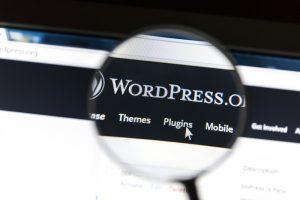 Wordpress websites and plugins